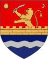 Actual Timis county CoA.svg
