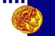 Soluň – vlajka