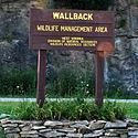 Thumbnail image of Lewis Wetzel WMA entrance sign
