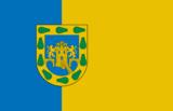 墨西哥城旗幟