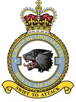 1 Group badge.jpg
