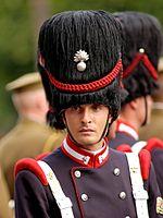 1st Sardinia Grenadiers Bastille Day 2007 n1.jpg