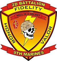 2-9 insignia current as of 2010.jpg
