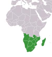 Mapa Afriky, zvýrazněny jsou státy jižní Afriky.