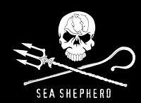 SSCS Flag.jpg