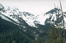 A glaciated mountain rising over a forested valley.