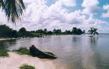 Pearlagoon.png