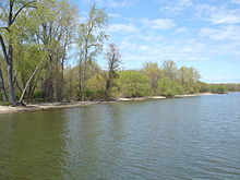 A shoreline from the water with a thin beach and flanked by green trees.