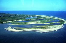 An aerial view of the green and sandy end of a peninsula.