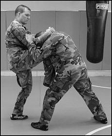 Knee strike.jpg