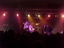 Fotografia di Fear Factory
