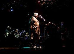 Pere Ubu in concerto a Vienna (2009).
