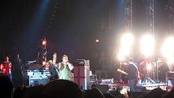 I Sex Pistols in concerto nel 2007