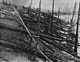 Waldschäden durch das Tunguska-Ereignis