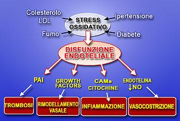 Stressossidativo.jpg