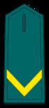 Guardia Alumno