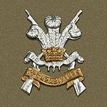 3rd Carabiniers Badge.jpg