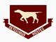 41 Squadron SAAF insignia.png