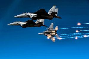 4th Operations Group - F-15Es - 2010.jpg