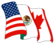 NAFTAs flagg
