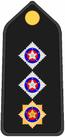 Insignia PM O3.PNG