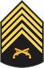 Insignia PM P1.PNG