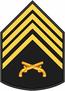 Insignia PM P2.PNG