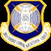 281st Combat Communications Group.PNG