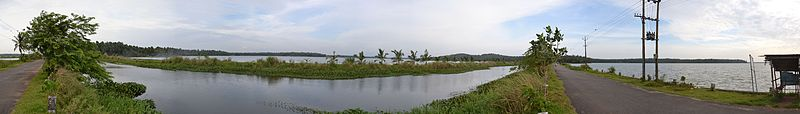An eastward panoramic view of shallow backwaters along the western regions of Thrissur district (Click to see in larger size)