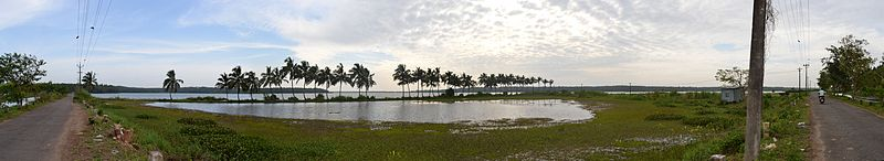 A westward panoramic view of shallow backwaters along the western regions of Thrissur district (Click to see in larger size)