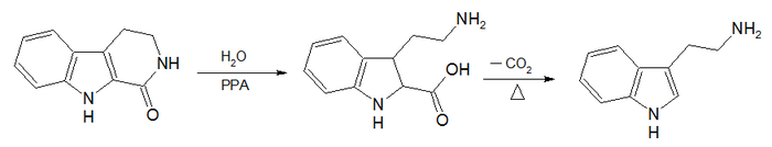 General structure of substituted tryptamines