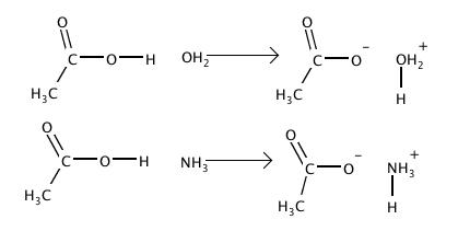 Acid-base.png