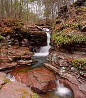 Photo of a plume of water falls in a narrow channel carved in layers of reddish brown rock. The falls, surrounded by green foliage, spill into a shallow pool.