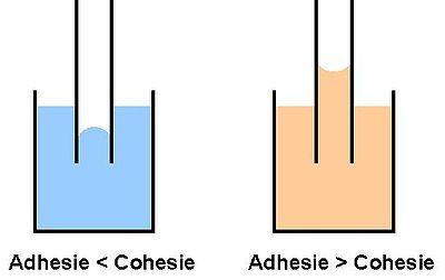 Adhesie-Cohesie.jpg