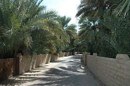 A dirt and cobblestone road runs through the center of the image, flanked by low plastered walls and palm trees.