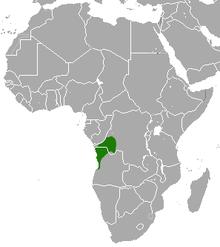 Carte de l'Afrique avec une tache verte à cheval sur l'Angola et le Congo