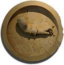 Aphaia pediment shield W-X back Glyptothek Munich.jpg
