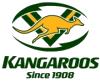 Badge of Australia team