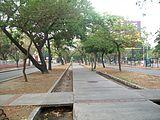 Ave Las Delicias, Maracay 016.jpg