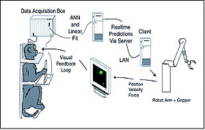 Drawing showing a monkey in a restraint chair, a computer monitor, a rototic arm, and three pieces of computer equipment, with arrows between them to show the flow of information.