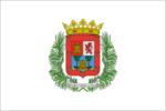Drapeau municipal de Las Palmas de Gran Canaria