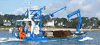 Bateau ostréicole breton