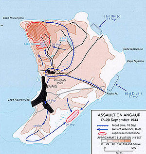 Battle of Anguar map.jpg