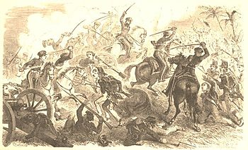 Battle of Resaca de la Palma.jpg