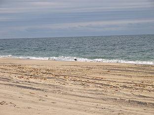 Beach in Charlestown.JPG
