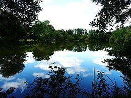 Alimenté par la Beauronne, l'étang de Beaufort à Saint-Front-de-Pradoux.