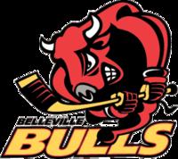 BellevilleBulls.PNG