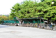 Bicycle Parking on campus