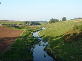 Blackadder Water from the Lintmill Bridge.jpg