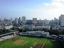 A grassy ground with skyscrapers behind it